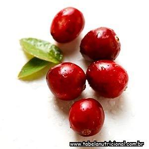 Suco de frutas vermelhas podem proteger contra infecções urinarias